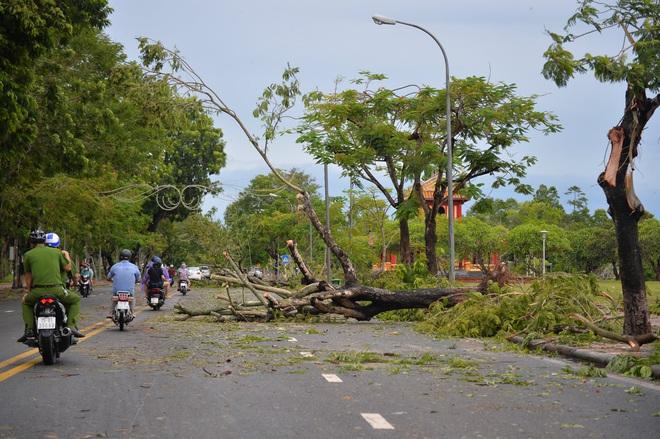 Cây ngã la liệt khiến 1 người chết và nhiều người bị thương, toàn tỉnh Thừa Thiên Huế mất điện sau khi bão số 5 đổ bộ - Ảnh 2.