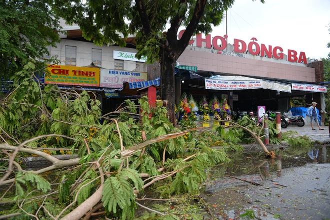 Cây ngã la liệt khiến 1 người chết và nhiều người bị thương, toàn tỉnh Thừa Thiên Huế mất điện sau khi bão số 5 đổ bộ - Ảnh 3.