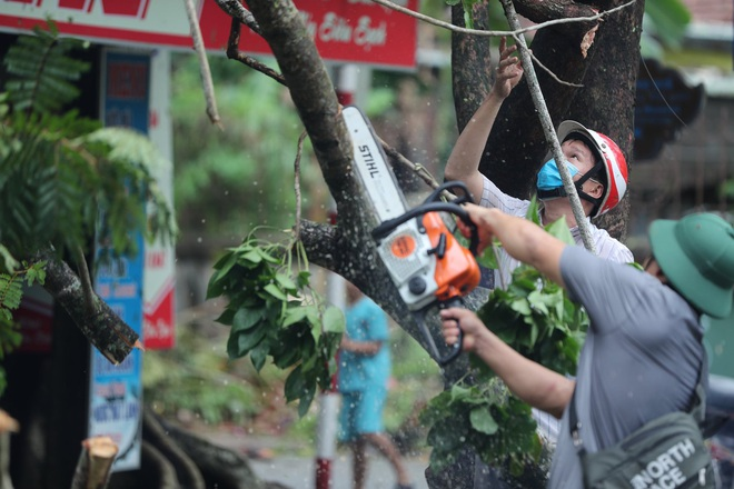 Cây ngã la liệt khiến 1 người chết và nhiều người bị thương, toàn tỉnh Thừa Thiên Huế mất điện sau khi bão số 5 đổ bộ - Ảnh 16.