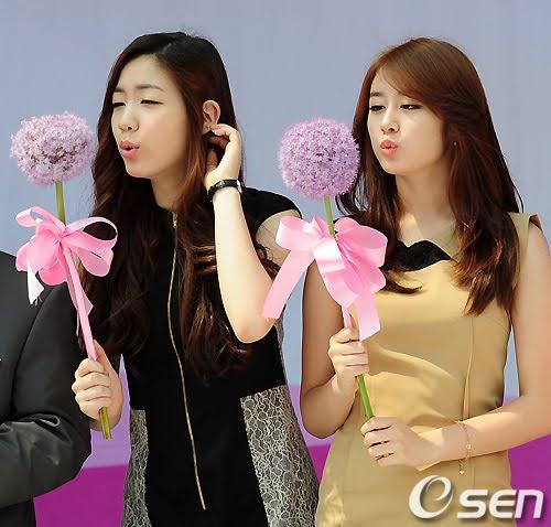 them-thong-tin-ve-viec-iyeon-tat-hwayoung