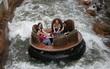 Úc: Đi chơi công viên giải trí, 4 người chết thảm