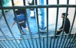 Trích xuất hình ảnh camera bắt giữ nhóm trộm xe táo tợn ở Sài Gòn