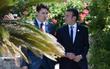 2 nguyên thủ đẹp trai của Pháp và Canada cùng đi dạo vườn hồng