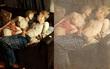 """Một bức ảnh mà khiến mạng xã hội """"chao đảo"""": Ảnh chụp bình thường hay tác phẩm nghệ thuật?"""