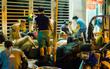 Chợ cua đặc biệt ở Sài Gòn: Suốt 50 năm chỉ tụ họp buôn bán lúc nửa đêm