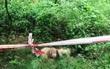 Đồng Nai: Nghi án người đàn ông bị sát hại rồi vứt xác dưới mương trong lô cao su