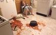 21 tai nạn bếp núc của những cô nàng tốt nhất không nên sống chung với mẹ chồng