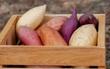 Thiếu vitamin A rất hại sức khỏe, sau cà rốt thì có những thực phẩm nào cũng giàu vitamin A?