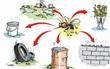 3 bước cần thực hiện ngay để nhà không còn muỗi gây bệnh sốt xuất huyết
