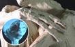 Hé lộ hình ảnh xác ướp giống người ngoài hành tinh trong hang động ở Peru