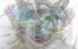 Con vật bạn nhìn thấy trong bức tranh ảo giác này sẽ tiết lộ ưu, nhược điểm của bạn