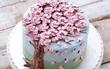 15 chiếc bánh kem hoa cỏ mùa xuân đạt tới đỉnh cao của nghệ thuật nấu nướng