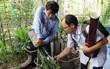 12 quận, huyện Hà Nội báo động đỏ dịch sốt xuất huyết: Đến từng nhà phun thuốc diệt muỗi, bọ gậy