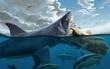 """Thứ gì đã giết chết """"đại cá mập"""" Megalodon? Cuối cùng khoa học cũng giải đáp được"""