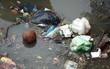 Hà Nội: Sông Tô Lịch ngập rác thải sinh hoạt, bốc mùi hôi thối