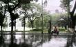 Bắc Bộ mưa to từ ngày mai do ảnh hưởng của bão số 6