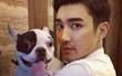 Gia đình CEO tử vong vì bị chó cưng nhà Siwon cắn bất ngờ lên tiếng