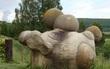 Tưởng cây nấm khổng lồ giữa rừng, lại gần mới nhận ra điều đặc biệt đến khó tin