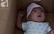 Vợ chồng cãi nhau, mẹ cho con trai 2 tháng tuổi vào thùng giấy bỏ trước UBND xã