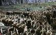 """Mục sở thị """"động quan tài"""", chứa hơn 400 cỗ thi thể ở Trung Quốc"""