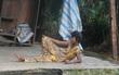 Người mẹ già xin từng bữa ăn nuôi 4 người con tâm thần ngã quỵ khi người con gái út té sông mà chết
