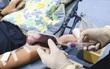 Một người Hong Kong nguy kịch vì viêm não Nhật Bản do truyền máu