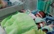Bé sơ sinh thiếu tháng bị bỏ rơi bên đường trong tình trạng nguy kịch