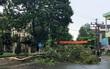 Lào Cai: Giông lốc tốc mái hơn 700 nhà dân, thiệt hại trên 7 tỷ đồng