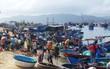 Khánh Hòa: Bão số 14, sơ tán dân trước 19h hôm nay