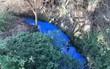 Đã tìm ra nguyên nhân gây biến đổi màu bí ẩn dòng sông ở Anh