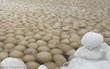 Bí ẩn hàng ngàn quả cầu băng trôi dạt vào bờ biển Nga có thể cho thấy một hiện thực đáng sợ