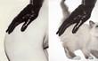 Thay đám mèo cute vào hình ca sĩ trên bìa album, cuối cùng hiệu ứng từ chúng còn hiệu quả hơn bản gốc