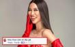 Bị chỉ trích dùng chiêu trò để nổi tiếng, Kiko Chan thản nhiên cám ơn cư dân mạng