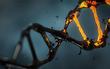 Cơ thể người hóa ra không hoàn hảo: Khoa học công bố 75% bộ gene của chúng ta là... rác?!
