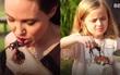 Angelina Jolie dạy các con ăn cả... nhện và bọ cạp ở Campuchia