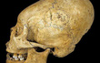 Nếu cho rằng đây là hộp sọ của người ngoài hành tinh thì bạn đã lầm rồi đó