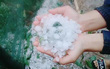 Mưa đá, giông lốc xuất hiện bất ngờ ở Nghệ An tàn phá nhiều tài sản của người dân
