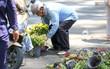 Người dân hào hứng lựa những chậu hoa tươi đem về nhà sau khi bế mạc Hội hoa xuân ở Sài Gòn