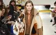 """Tuần lễ thời trang Milan: Người mẫu vừa catwalk vừa bế trên tay 1 chú """"tiểu Tuất"""" cực đáng yêu"""