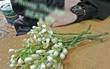 Góc tán gái lạ: Lần đầu gặp đã tặng hoa bưởi để bàn thờ cho thơm