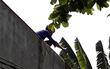 TP.HCM: Nam thanh niên nghi ngáo đá leo lên nhà dân cố thủ nhiều giờ, cầm gạch chống trả công an