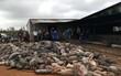 Đắk Nông: Chập điện, hơn 1.200 con lợn của người dân bị chết cháy