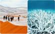 8 hiện tượng kỳ lạ khiến ai cũng rùng mình nhận ra: biến đổi khí hậu đang ở rất gần