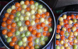 Xuất hiện bánh rán trà xanh 500đ/cái, chụp ảnh review Instagram siêu xinh