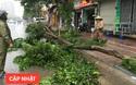Ảnh hưởng bão số 1 đang gây ra mưa to gió giật cực lớn ở Hà Nội và các tỉnh phía Bắc