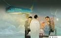 Báo Hàn ca ngợi Vietnam Airlines hoãn chuyến bay để vận chuyển hành khách Hàn Quốc bị thương nặng