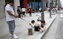 """Chuyện trẻ con và chó ở phố đi bộ: Ai cũng yêu """"con"""" mình, thế giới hòa bình đâu ra?"""