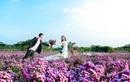 Đắm mình với hình ảnh ngọt ngào của các cặp đôi trong BST ảnh cưới của Julia
