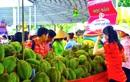 Suối Tiên – Rộn ràng Lễ hội trái cây Nam Bộ 2017