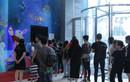 Chùm ảnh: Lượng người đổ về Lotte cuối tuần tăng đột biến, chật kín khách tham quan và mua sắm